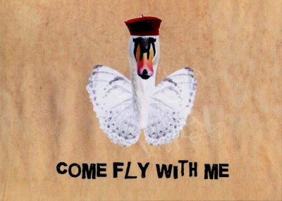 Come fly with me bestellen